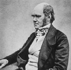 What would Charles Darwin think about his great-great-great-grandaughter attending church. Photo: Charles Darwing: Wikipedia