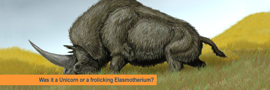 Was it a Unicorn or a frolicking Elasmotherium?