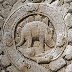 Did men and dinosaurs live at the same time? Check this image of a Stegosaurus on an 800 year old Buddhist temple in Cambodia.