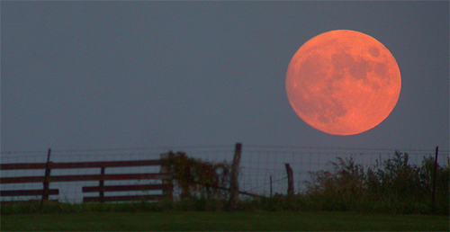 Did you know four blood moons are scheduled to appear in 2014 and 2015? Photo Blood Moon Wikipedia/Roadcrusher