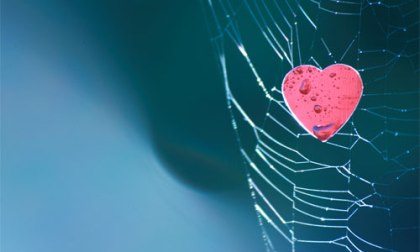 Are you trapped by the desires of your heart? Image Neal.   Foter   CC BY