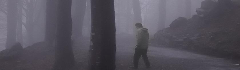 Finding the right path through despair. Photo aha42 | tehaha/Foter/CC BY-NC