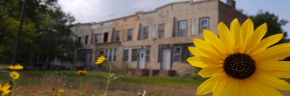 Abandoned homes in Gary, Indiana Photo: Eric Allix Rogers/Flickr/Creative Commons