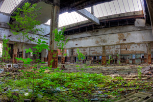 The urban jungle -- trees growing inside an abandoned post office in Gary, Indiana Photo: slworking2/Flickr/Creative Commons