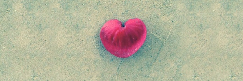 Photo of the Heart shaped leaf that fell at Laura's feet as she meditated on God's love for her.