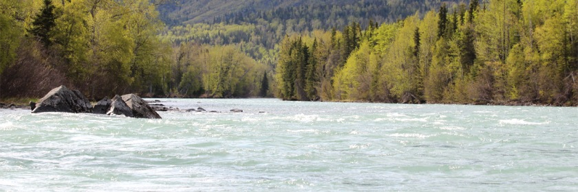Kenai River in Alaska. Photo: Teresa/Flickr/Creative Commons