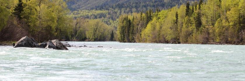 Kenai River in Alaska. Photo: Teresa/Flickr/Creative Commons