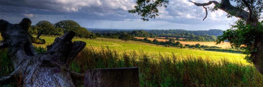 A scene near Hampshire England. Credit: Neil Howard/Flickr/Creative Commons
