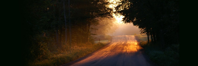 Every morning you must decide how you will walk your road that day. Credit: Julie Falk/Flickr/Creative Commons