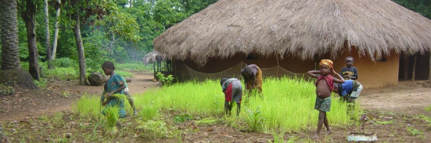Rural village in Sierra Leone Credit: martagiqs/Flickr/Creative Commons