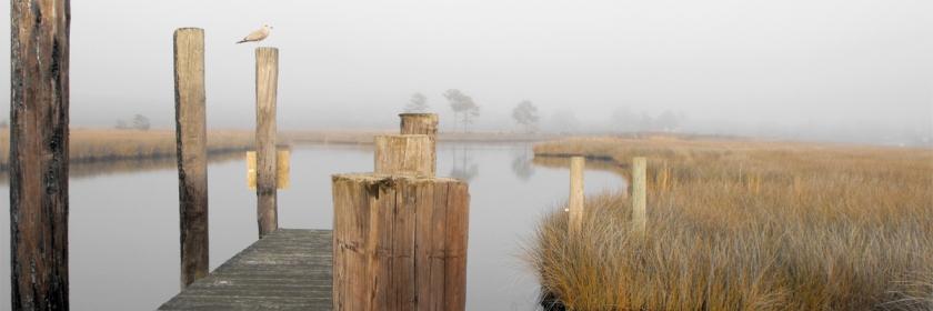 Swan Quarter, North Carolina Credit: Ingrid Lemme/Wikipedia