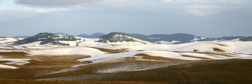 Palouse region of Idaho Credit: Charmar/Wikipedia/Creative Commons
