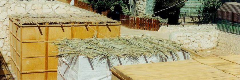 Roof of booths set up in Jerusalem for the Feast of Tabernacles Credit: Yoninah/Wikipedia/Creative Commons