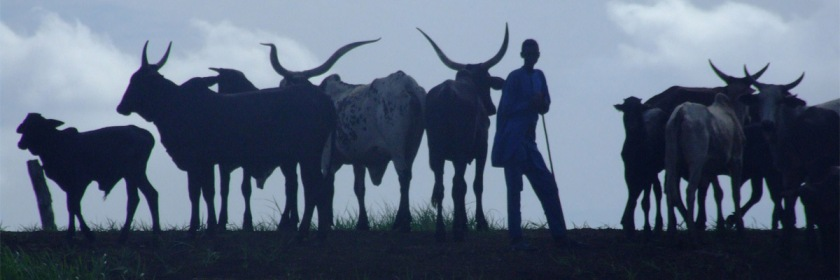 Fulani herdsmen Credit: John Mauremootoo/Flickr/Creative Commons