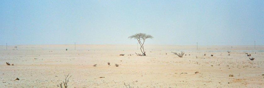 Desert in Qatar Credit: Sam Agnew/Flickr/Creative Commons